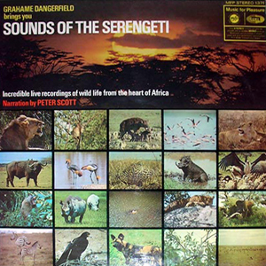 Sounds of the Serengeti - Grahame Dangerfield
